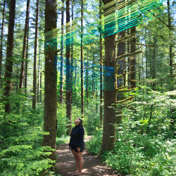 """Beams"" art installation at Tillamook Forest Center, summer 2016"
