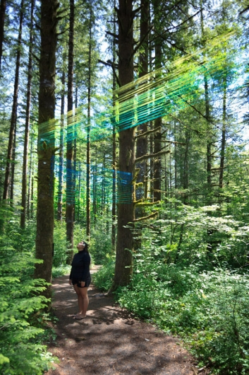 Beams - forest string art installation by Emily Miller